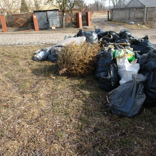Worski śmieci zebrane z Starego Fordonu